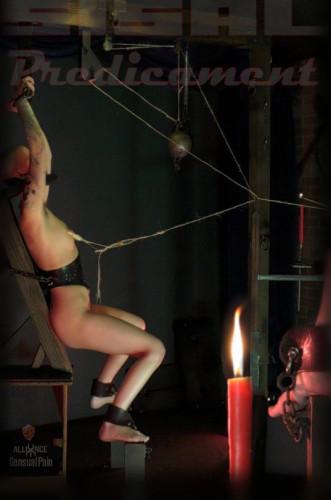 Abigail Dupree - Sisal Predicament (2017).