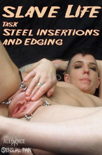 Description Slave Life - Task - Steel Insertions and Edging