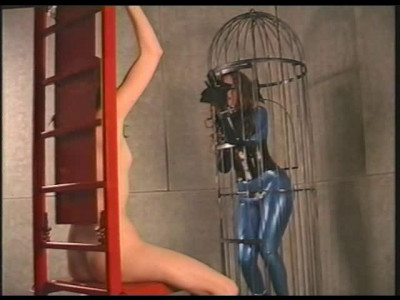 Gwen Media - Web Slaves