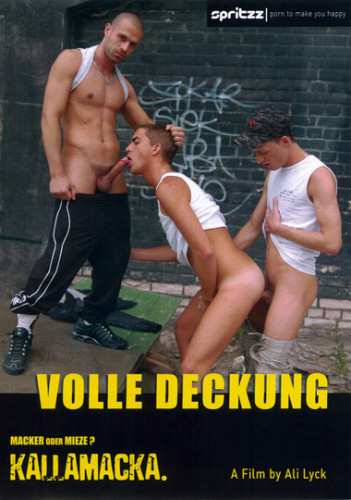 Description Volle Deckung