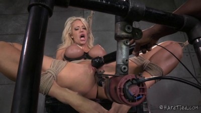 Courtney Taylor Bondage Barbie (2014)