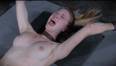 Orgasmageddon  – Ashley Lane