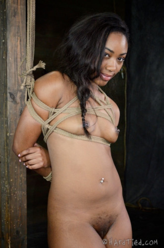 Description HT - Bitch In The Bag - Jack Hammer, Chanell Heart - HD