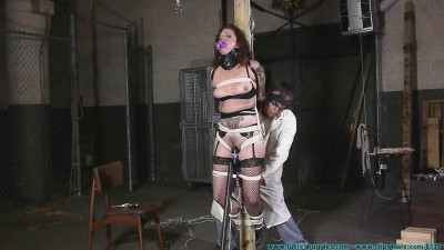 Polly Post Tied – Part 2