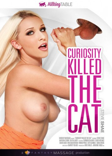 Curiosity The Cat (2016)