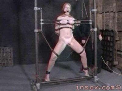 Insex – Peaches' Training (Peaches)