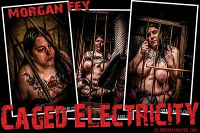 Morgan Fey — Caged Electricity