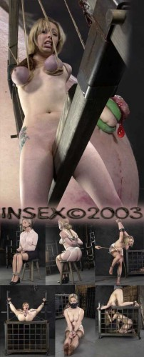 Seven Live Feed – InSex