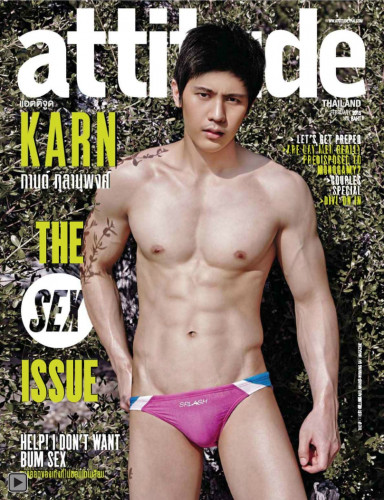 Description Attitude February 2015