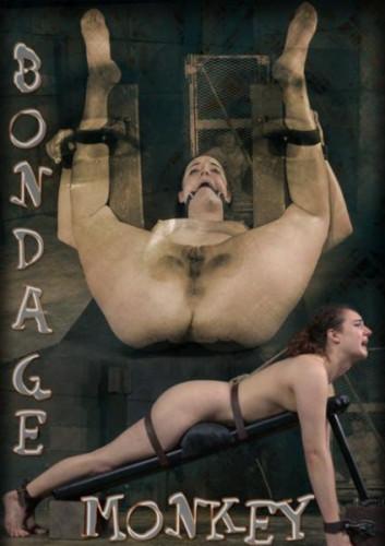 Endza-Bondage Monkey Part 3