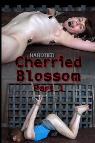 Cherried Blossom