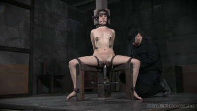 Bondage Monkey Part 2