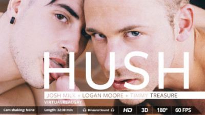 Description Virtual Real Gay - Hush (Android/iPhone)