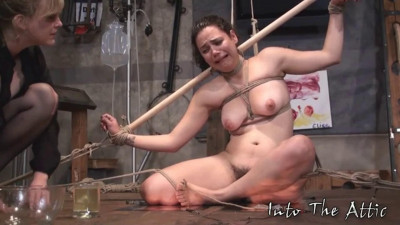 Hard bondage, domiantion and torture for naked slavegirl part 2
