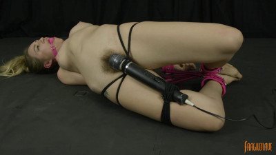 Hogtied in Pink