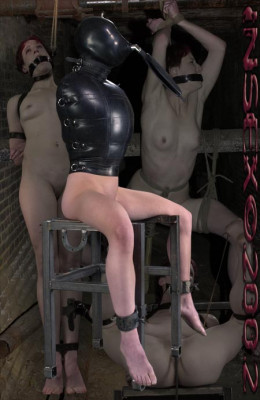 Insex — The Roomate (1201's Test) (1201)