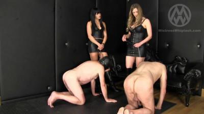 Mistress Nikki Whiplash - Dirty Puppies