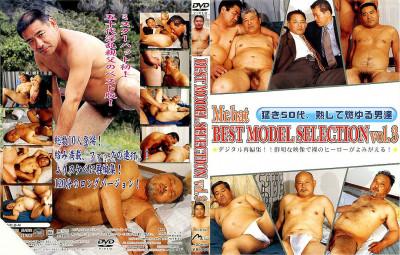 Best Model Selection Vol 3