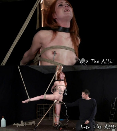 Bondage, strappado and torture for sexy young bitch