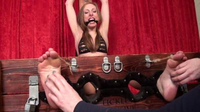 TickleIntensive  Bdsm Porn Videos Pack