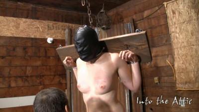 vid bondage download - (Brinn Bondage (2010))