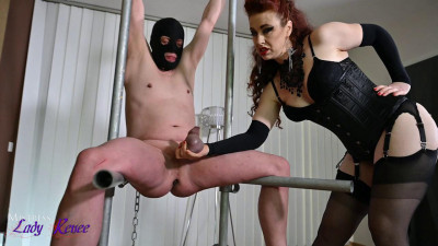 Mistress Lady Renee - Ballbusted In The Spreader Device