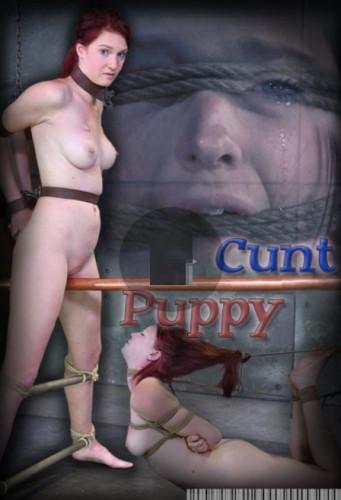 Cunt Puppy Part 2 - Ashley Lane!