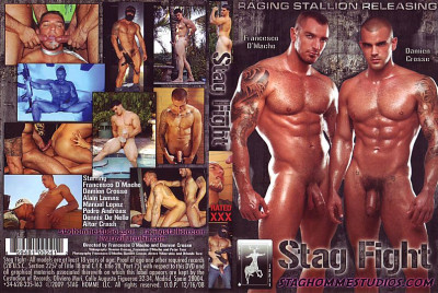Stag Homme Studios - Stag Fight