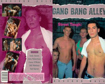 Gang Bang Alley - Cody Foster, John Robertson, Cassy O'Brien (1992)