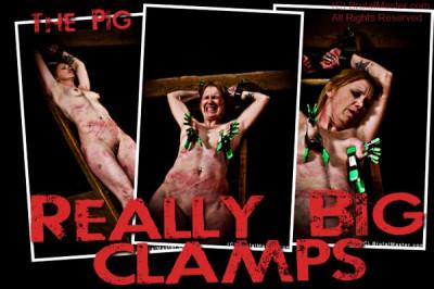 Pig  Big Clamps
