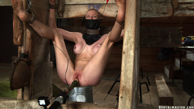 HD Bdsm Sex Videos Cow Stalls and Electric Toes