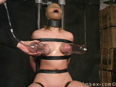 Insex Model 822 Complete Pack (7 clips)