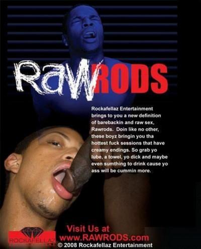 Description Raw Rods Vol. 1
