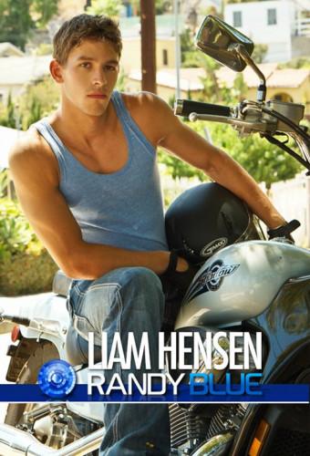 Description Liam Hensen