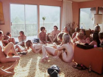 Description Sexual Encounter Group (1970)