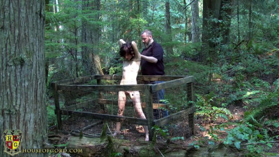 Naughty Nickle's Woodland Adventure