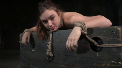 Lush Brunette Jodi Taylor Bent Over, Bound Used Hard With Drooling Deepthroat (2015)