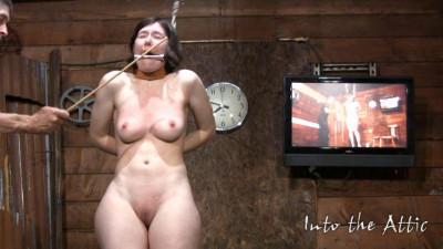 Naomi (tit, media video, video)...