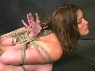 Insex – Application (Live Feeds From June 29 And July 6, 2001) RAW