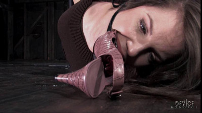Bobbi Starr If The Shoe Fits