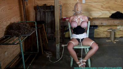 Description Perverted Couple Bind and Objectify the Busty Blonde
