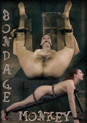 Endza-Bondage Monkey Part 1