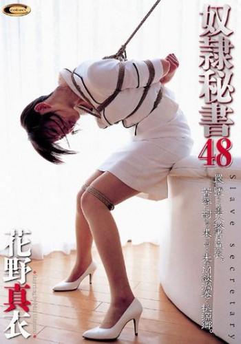 Description Mai Hanano - Slave Secretary 48