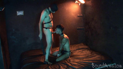 Description Humiliating Puppy Play Ends