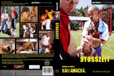 Description Young Bastards - Stosszeit