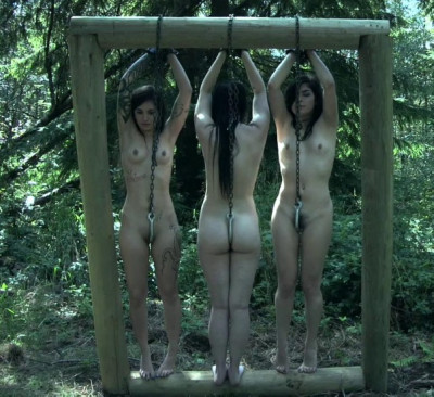Outdoor Bondage Party With 4 Hot Slaves