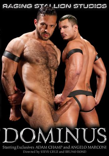 Description Dominus