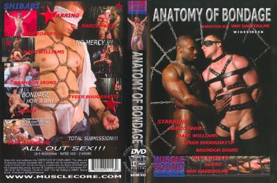 Description Muscle Bound Prod - Anatomy of Bondage (Van Darkholme)