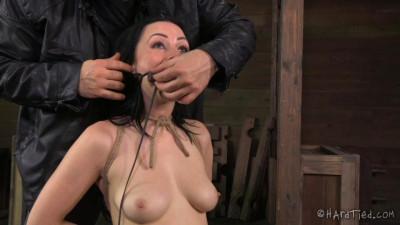 The Good Little Slave – Veruca James