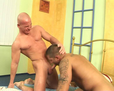 Big Best Collection Clips 39 in 1 ,